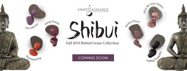 banner for fee wallace blog on light elegance bettercream collection shibui